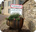 Gallery of Pommard and surrounding vineyards